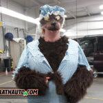 The Big Bad Wolf (AKA) Colleen Houdyshell