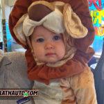 Scary Lion (AKA) HB McGrath